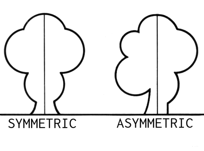 asymmetry-comparission